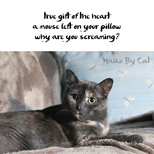Haiku by Cat: true gift of the heart / a mouse left on your pillow / why are you screaming?