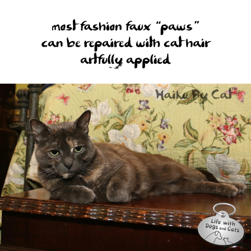 Athena Haiku fashion faux paw cat hair